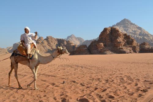 Bedoeïen op een kameel in de Wadi Rum