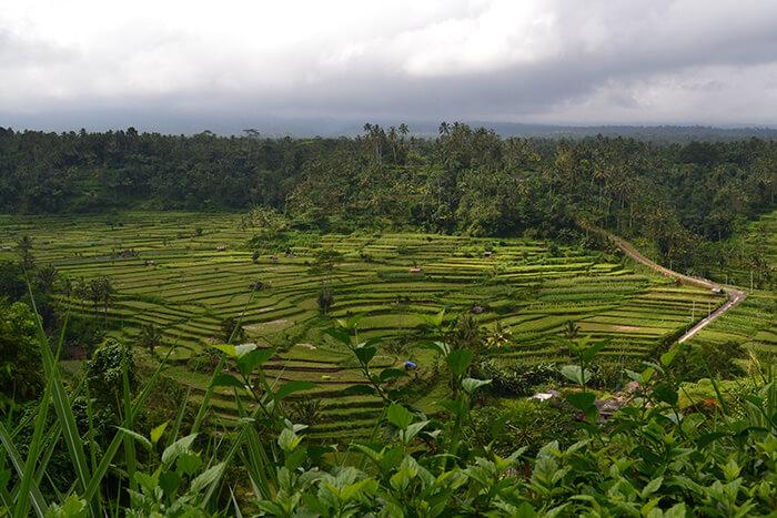 Bali bezienswaardigheden