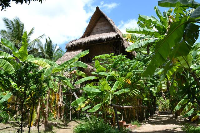 Boomhut Cambodja