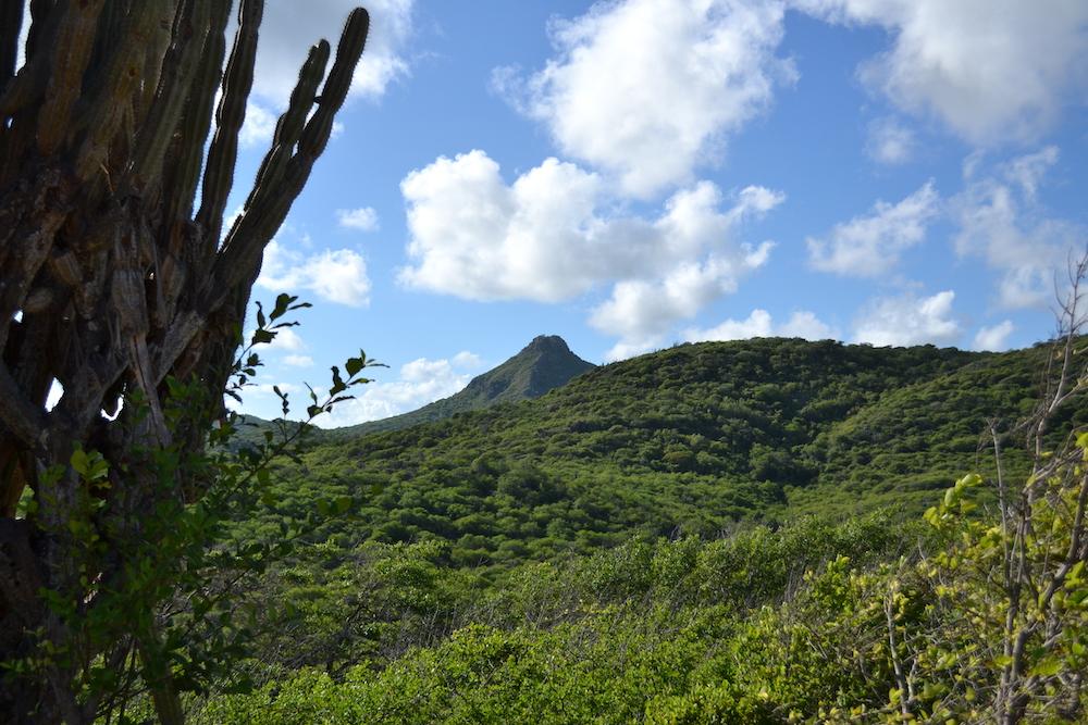 Bezienswaardigheden Curacao: Christoffelpark