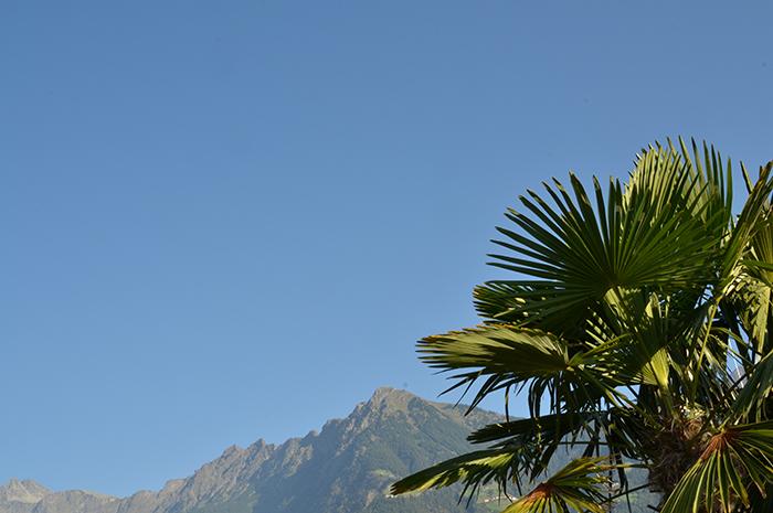 Weetjes Zuid-Tirol