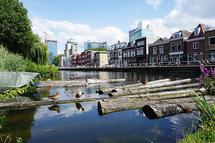 Wat te doen in Utrecht: Molen de Ster