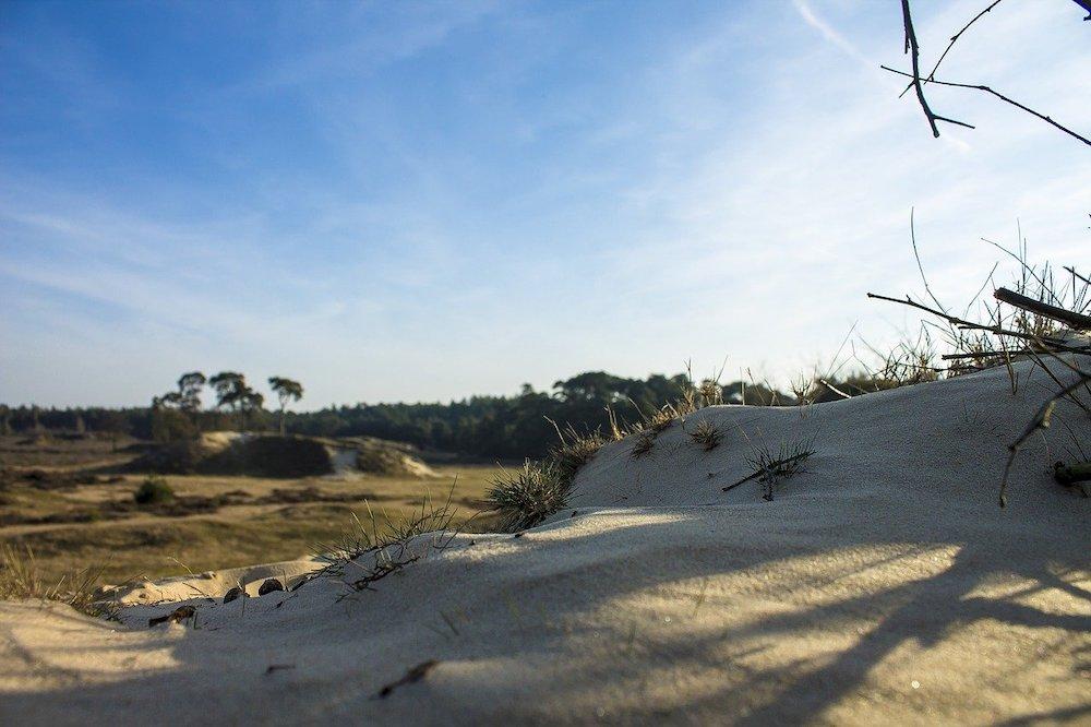 Wat te doen in Nederland: Loonse en Drunense Duinen