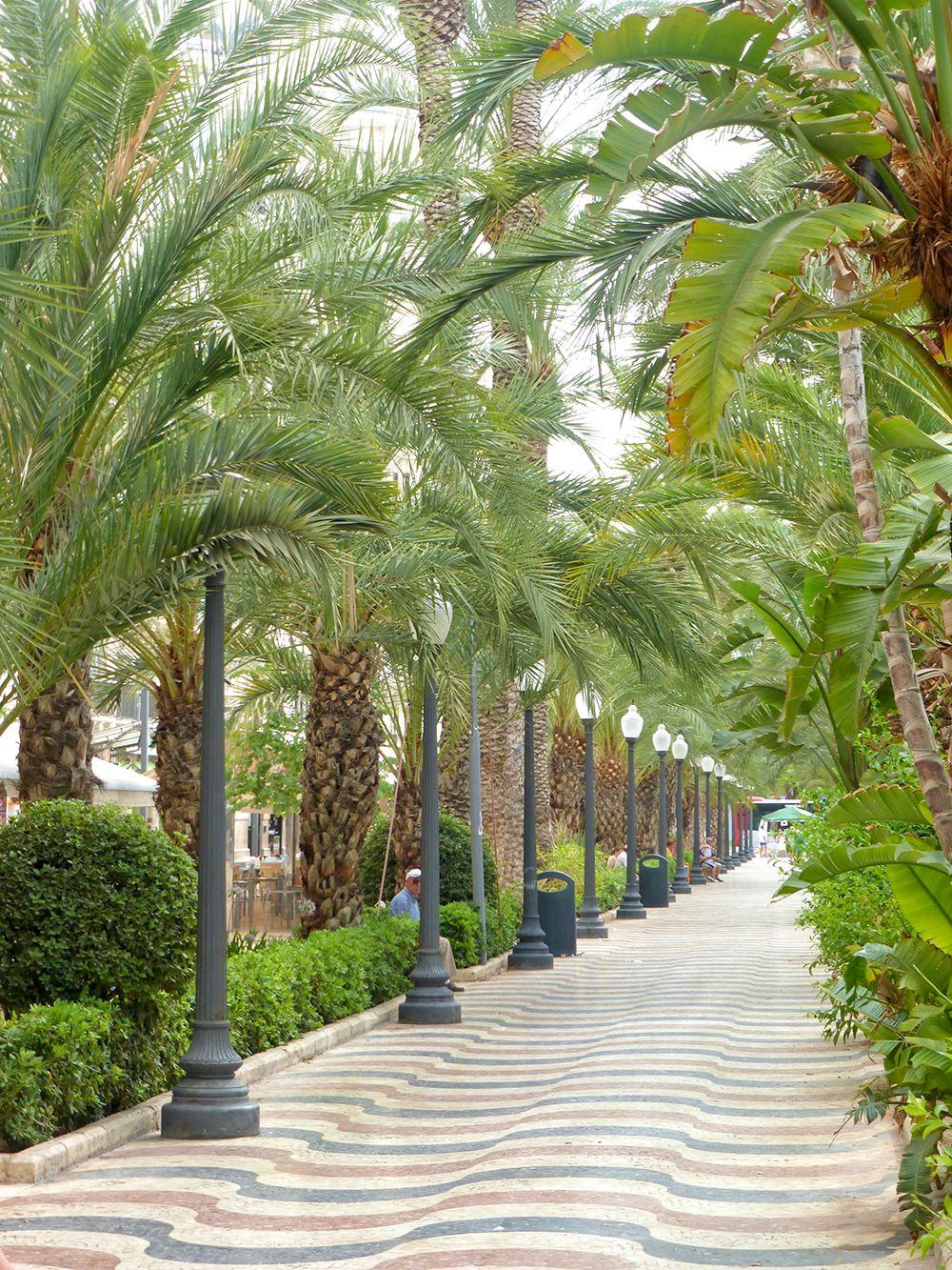Wat te doen in Alicante