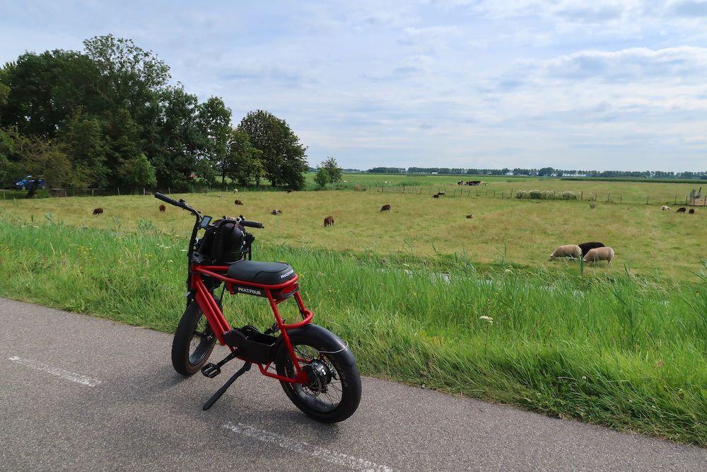 Wijntour Noord-Holland: Phatfour
