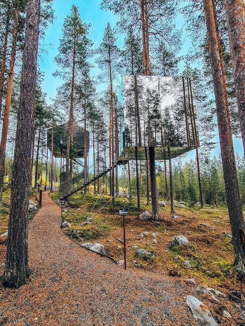 Zweeds Lapland herfst: Tree Hotel