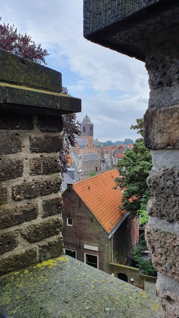 Wat te doen in Leiden: Burcht
