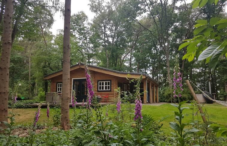 Huisjes in het bos met jacuzzi